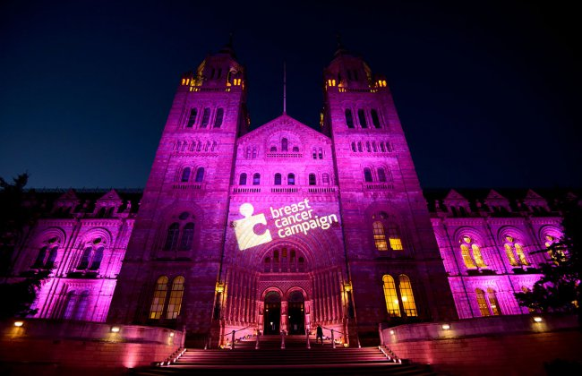 Pink Ribbon Ball celebrates its 20th anniversary at the iconic Natural History Museum